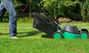 Lawn mowing business. pic: sxc.hu